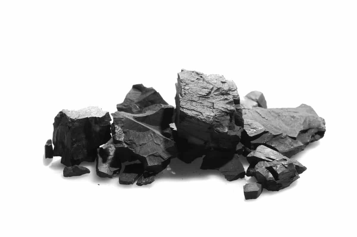 Holzkohle in der Natur. Aus der Kohle wird das Globuli zur homöopathischen Behandlung hergestellt. Das Globuli Carbo vegetabilis wird in der Homöopathie bei Krankheiten wie Erschöpfung, Venenschwäche und Verdauungsschwäche eingesetzt. Fotolia © dule964