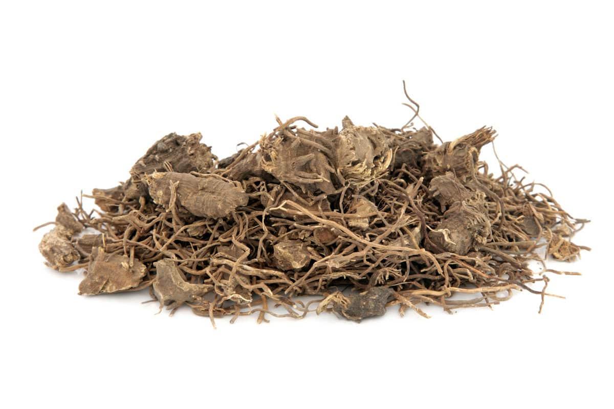 Erfahre mehr über Caulophyllum und die heilende Wirkung bei Krankheiten wie Gebärmutterblutungen, Rheumatismus und Schwangerschaftsbeschwerden. Fotolia © marilyn barbone