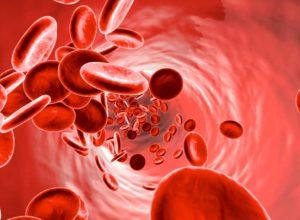 Anämie? Unsere Hausmittel helfen dir dabei deine Blutarmut zu behandeln und das mit völlig kostenlosen Tipps. © Spectral-Design
