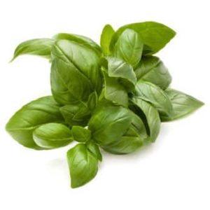 Erfahre mehr über die heilende Wirkung von Basilikum. Die Heilpflanze eignet sich vor allem zur Behandlung von Schlaflosigkeit, Migräne und Schnupfen. © Natika