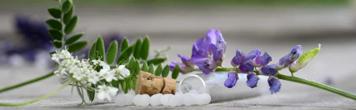 Erfahre mehr über homöopathische Mittel die in deine Hausapotheke gehören. Fotolia © Gerhard Seybert