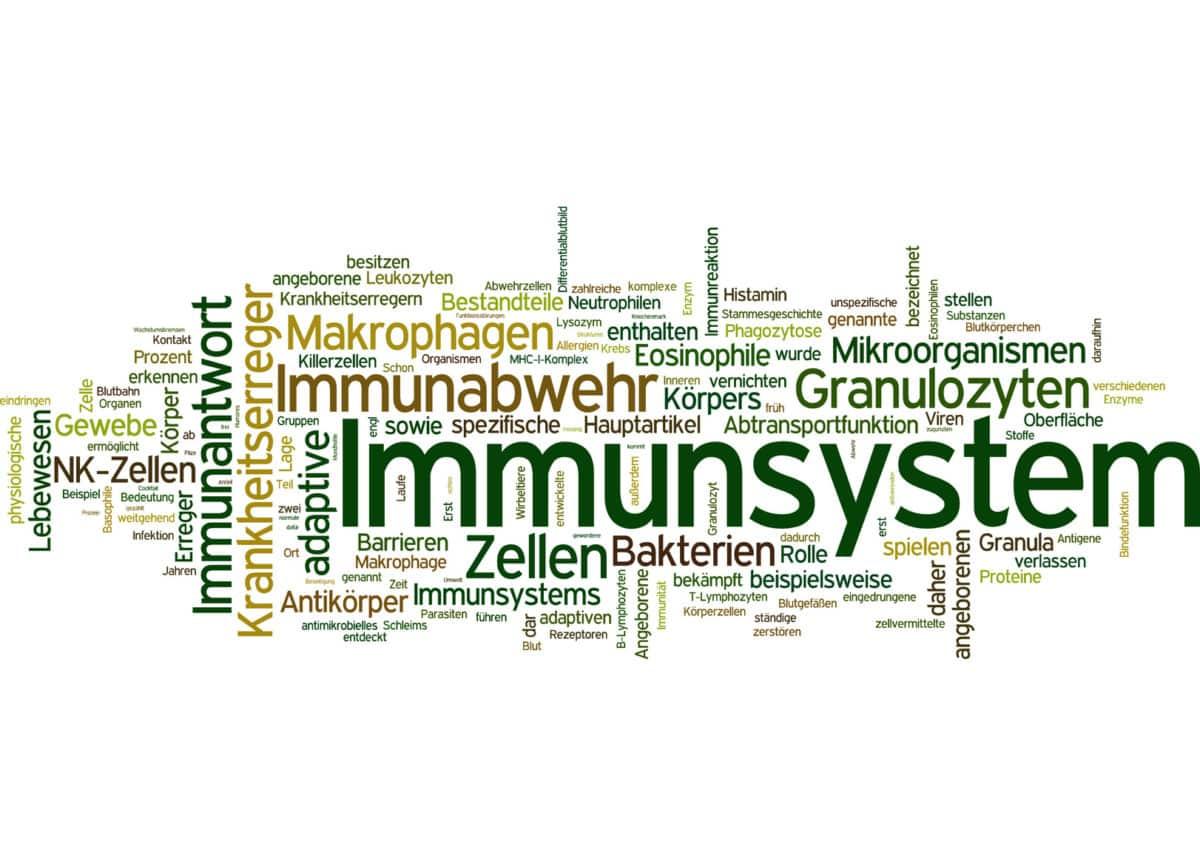 Erfahre mehr über die Behandlung einer Abwehrschwäche (Immunschwäche) und welches homöopathische Mittel hilft. Fotolia © fotodo